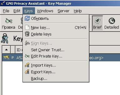 Заходим в нашу программу по созданию и управлению ключами GPA. Выбираем меню Keys — Import Keys...