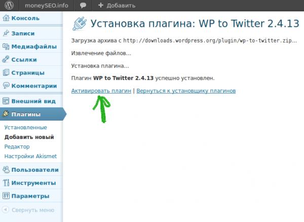Установка плагина WP to Twitter 04