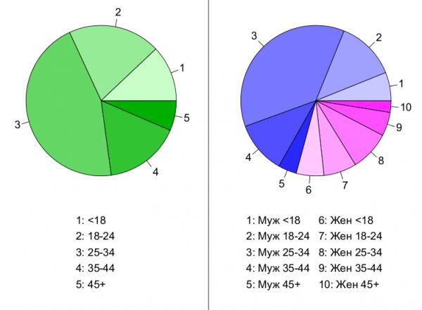 Структура месячной аудитории сайта: пол и возраст