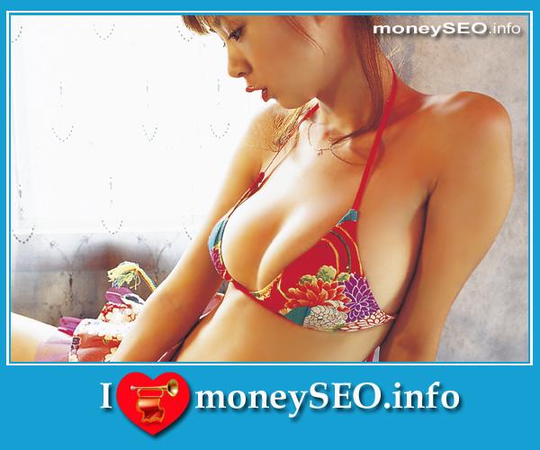 moneySEO_info_3_19