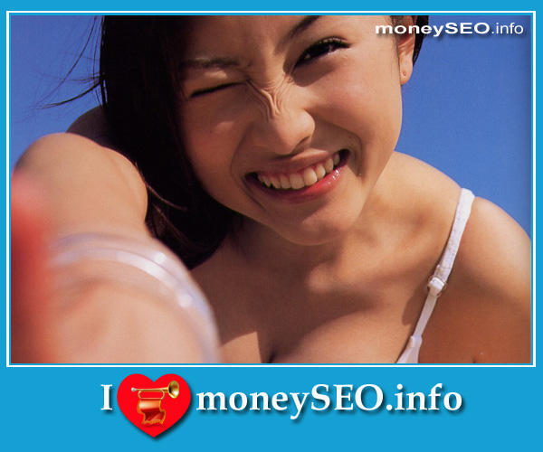 moneySEO_info_3_64