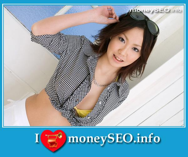 moneySEO_info_3_97