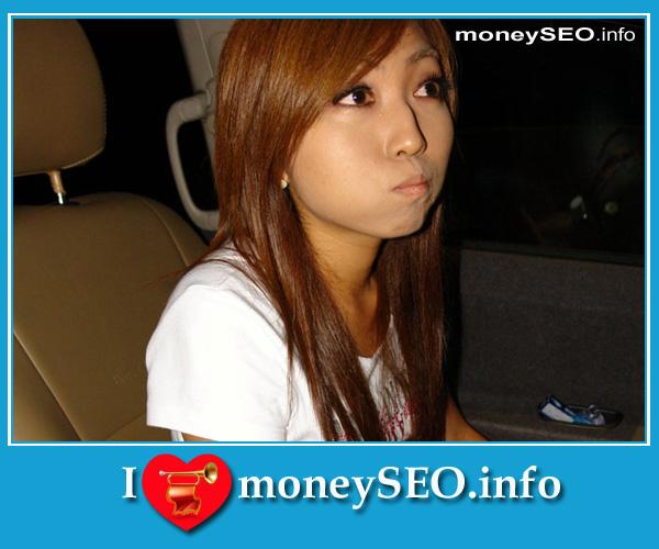 moneySEO_info_3_118