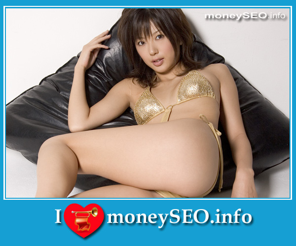 moneySEO_info_3_110