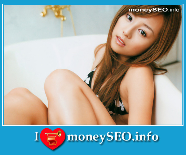 moneySEO_info_3_117