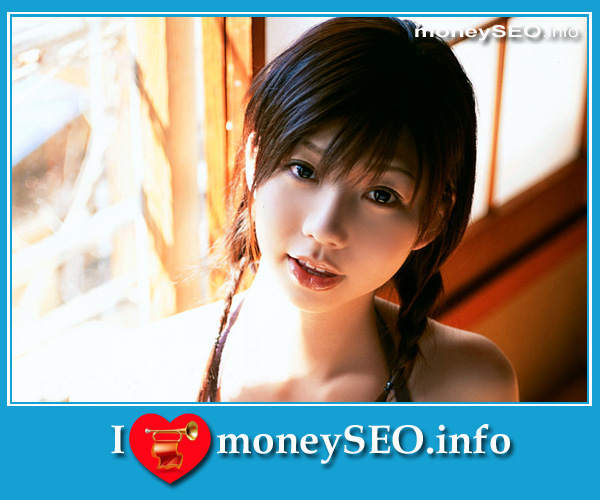 moneySEO_info_3_114