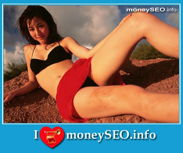 moneySEO_info_3_45