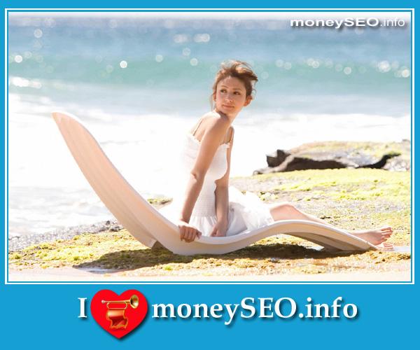 moneySEO_info_3_92