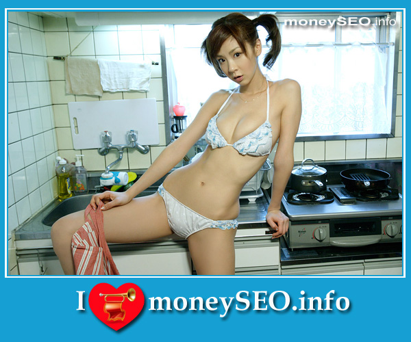 moneySEO_info_3_20