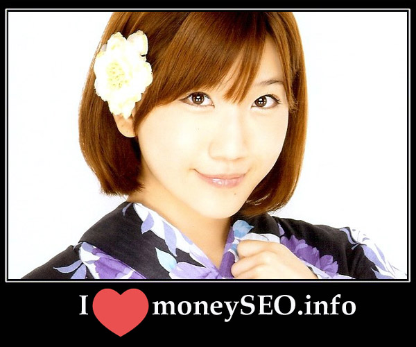 moneySEO_info