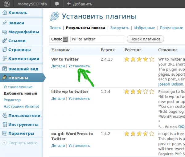 Установка плагина WP to Twitter 02