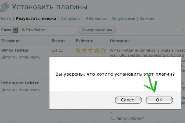 Установка плагина WP to Twitter 03