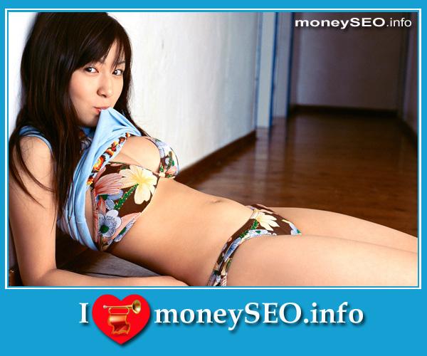 moneySEO_info_3_90