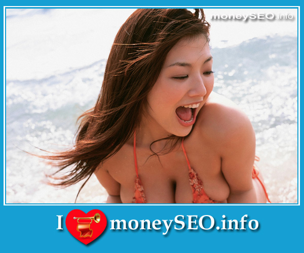 moneySEO_info_3_122