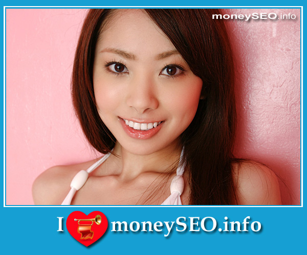 moneySEO_info_3_108