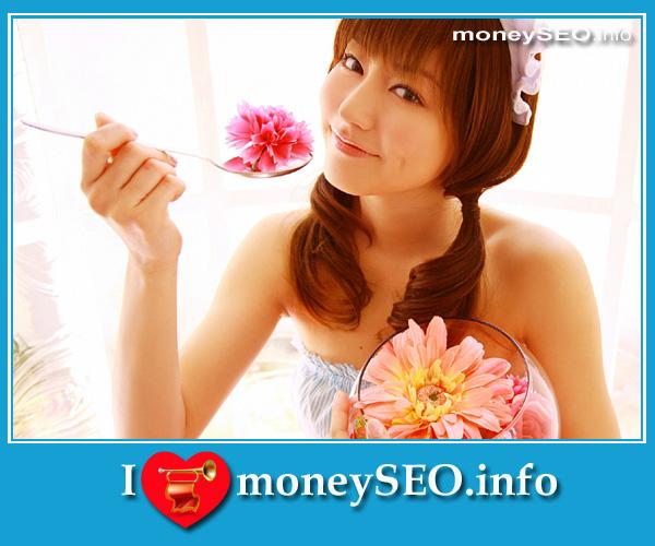moneySEO_info_3_46