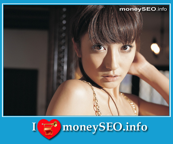 moneySEO_info_3_56