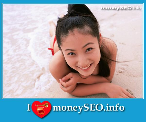moneySEO_info_3_69